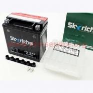Акумулятор 14А YTX16-BS (кислотний, сухий) SKYRICH