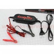 Зарядное устройство для АКБ 6V/12V (импульсное) (Mototech)